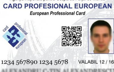 card-profesional