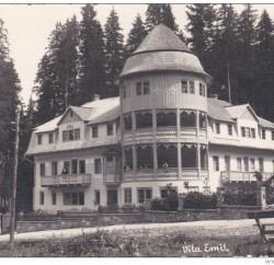 Vila 49 in anii '30
