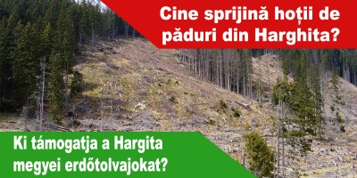 Ki-támogatja-a-Hargita-megyei-erdőtolvajokat