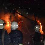 incendiu-ineu-4