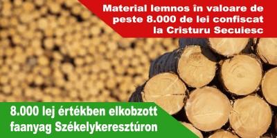 8.000-lej-értékben-elkobzott-faanyag-Székelykeresztúron
