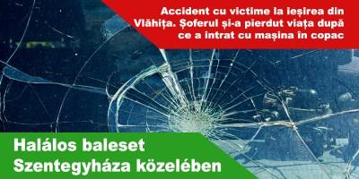accident-vlahita