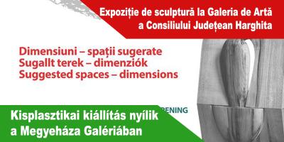 Expoziție-de-sculptură-la-Galeria-de-Artă-a-Consiliului-Județean-Harghita