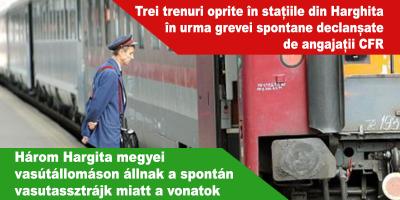 Három-Hargita-megyei-vasútállomáson-állnak-a-spontán-vasutassztrájk-miatt-a-vonatok