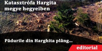 Katasztrófa-Hargita-megye-hegyeiben