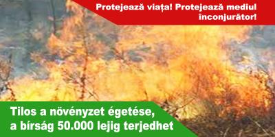 Tilos-a-növényzet-égetése,-a-bírság-50.000-lejig-terjedhet