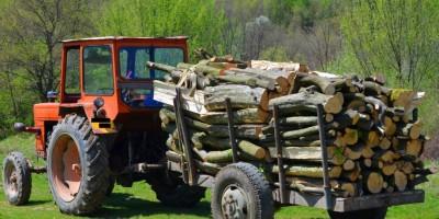 transport-ilegal-de-lemne