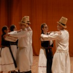 Zilei Culturii Naționale și Anului Centenarului la Odorheiu Secuiesc (13)