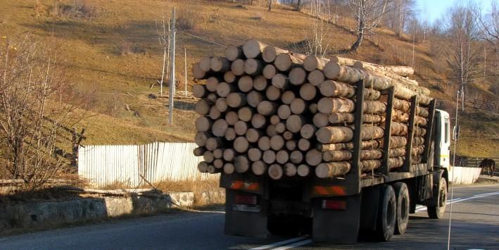 Camion-cu-busteni