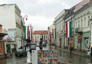 steaguri ungare