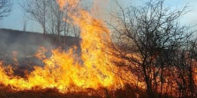 11517-incendiu